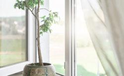 ロサリナの香りと効能・使い方